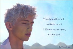 bloom03_pic