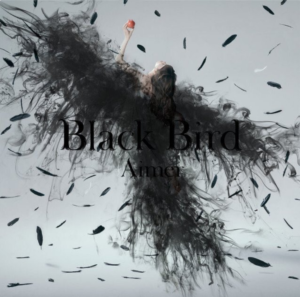 black_bird01_pic