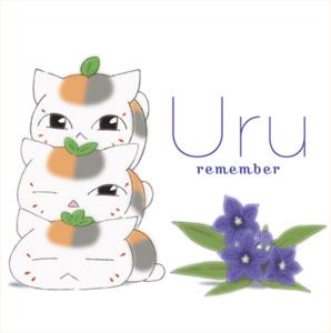 remember_04_pic